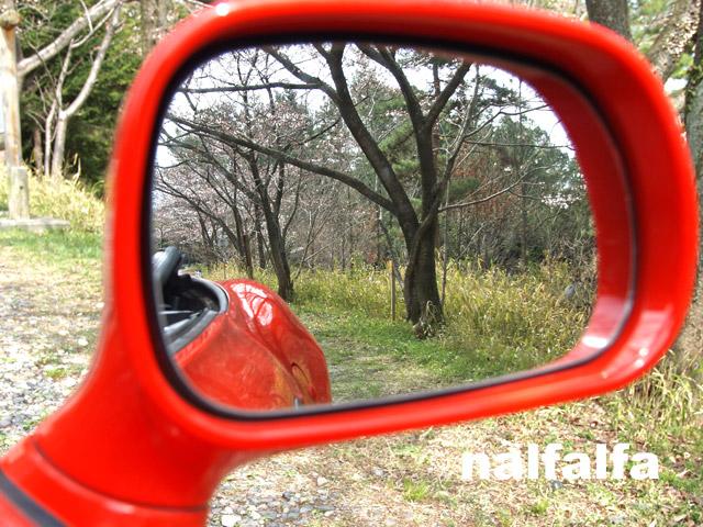 mirrorZ3.jpg